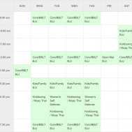 Best Brazilian Jiu Jitsu Club Schedule